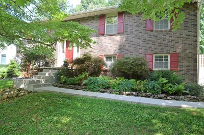 Powell Single Family Home For Sale: 7527 S Whispering Oak Circle