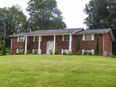 Knoxville Single Family Home For Sale: 1407 Rosalyn Drive