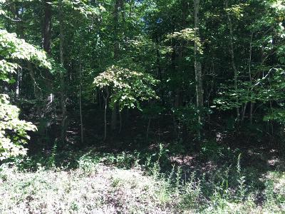 Fairfield Glade Residential Lots & Land For Sale: 18 Bruceshire Court