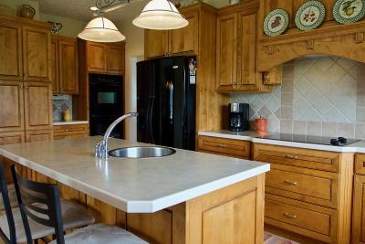 Single Family Home For Sale: 507 Ledford Lane