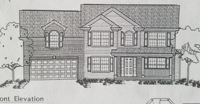 Corryton Single Family Home For Sale: Lot 24r Bethesda Springs Way