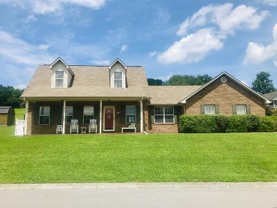Knoxville Single Family Home For Sale: 5001 Omega Terrace Lane