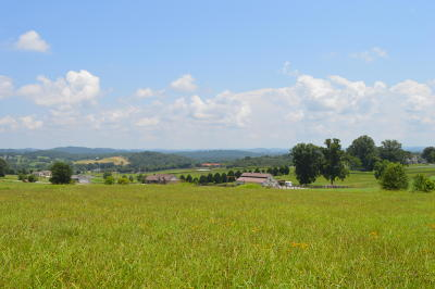 Blaine Residential Lots & Land For Sale: Ranch Rd
