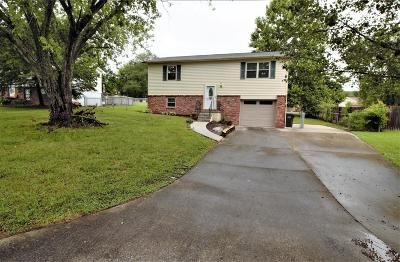 Knoxville Single Family Home For Sale: 1829 Brookmill Rd