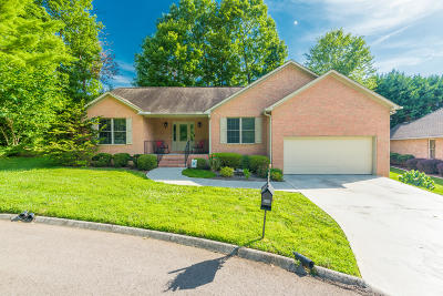 Knoxville Single Family Home For Sale: 3500 Greywolfe Drive