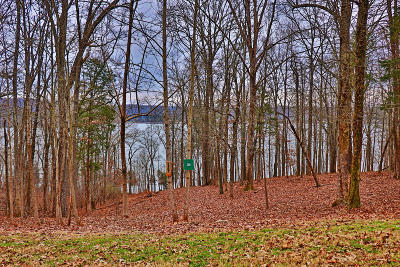 Residential Lots & Land For Sale: 247 E Shore Drive