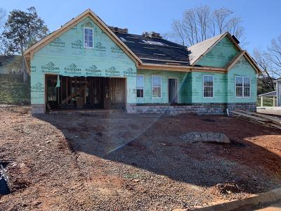 Knoxville Single Family Home For Sale: 2603 Windjammer Lane