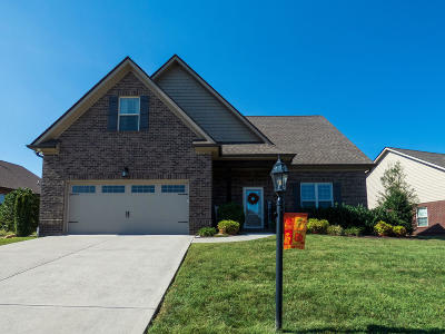Knoxville Single Family Home For Sale: 3309 Parrish Hill Lane