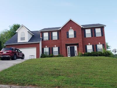 Knoxville Single Family Home For Sale: 7331 Jenkins Creek Drive