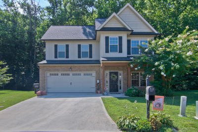 Knoxville Single Family Home For Sale: 1200 Dark Creek Lane
