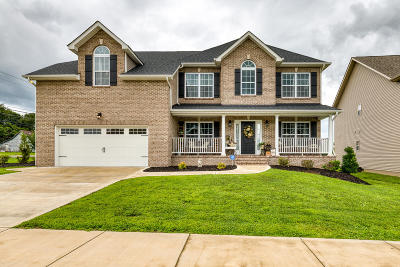 Knoxville Single Family Home For Sale: 1746 Yearling Rd