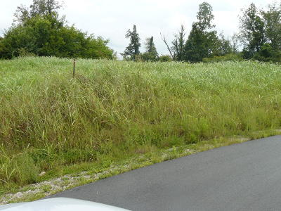 Rutledge Residential Lots & Land For Sale: Lot 3 Lookout Drive