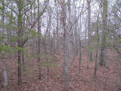Fairfield Glade Residential Lots & Land For Sale: Mountain View Drive