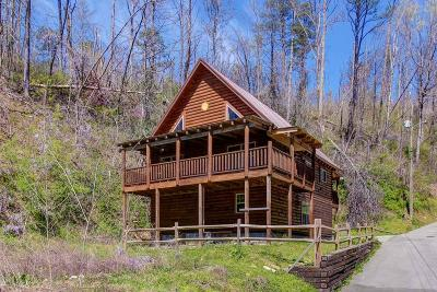 Gatlinburg Single Family Home For Sale: 133 Hickman Hollow Rd