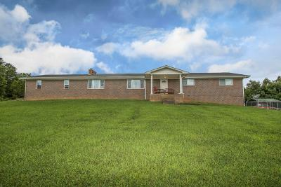 Loudon Single Family Home For Sale: 1675 Malone Rd