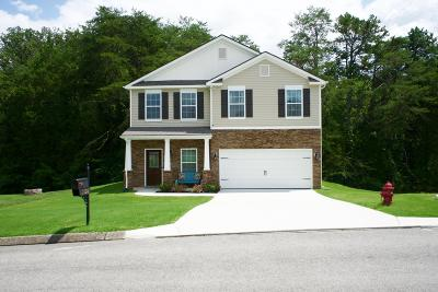 Corryton Single Family Home For Sale: 5308 Golden Eagle Lane