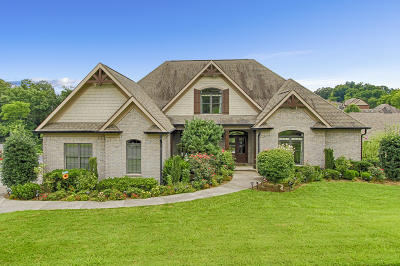 Knox County Single Family Home For Sale: 2508 Shady Meadow Lane
