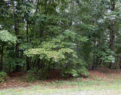 Fairfield Glade Residential Lots & Land For Sale: 204 Amherst Lane