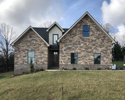 Knoxville Single Family Home For Sale: 12545 Daisy Field