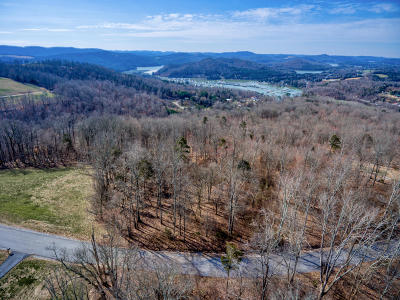 Rock Harbor, Rock Harbor Ii Sect I, Rock Harbor Ii Sect Iii A, Rock Harbor Ii Sect Iii B, Rock Harbor, Norris Lake, Rock Harbor Ii Section 1, Rock Harbor Phase 1 Residential Lots & Land For Sale: 249 Tanzanite Tr