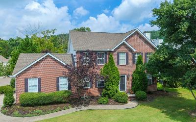 Knoxville Single Family Home For Sale: 6807 Tempest Lane