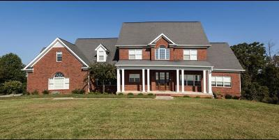 Knoxville Single Family Home For Sale: 10417 Bob Gray Rd