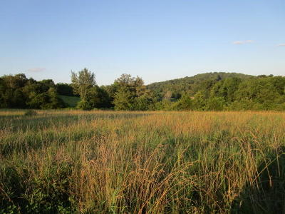 Blaine Residential Lots & Land For Sale: 3279 Indian Ridge Rd