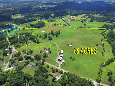 Knox County Residential Lots & Land For Sale: 10724 E Emory Rd