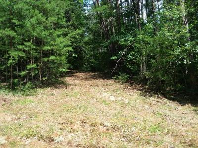 Tellico Plains Residential Lots & Land For Sale: 490 Unicoi Lakes Rd