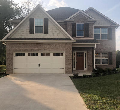Lenoir City Single Family Home For Sale: 848 W Glenview Drive