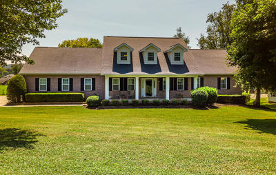 Sevierville Single Family Home For Sale: 1348 Meadowlands Circle