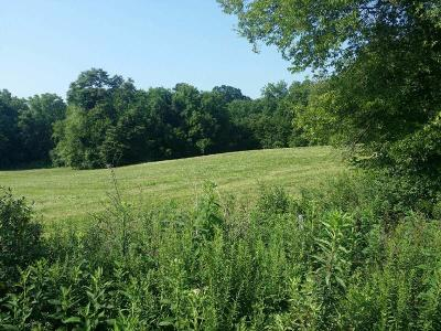 Loudon County Residential Lots & Land For Sale: 6443 Morganton Rd