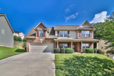 Knoxville Single Family Home For Sale: 1114 Snyder Ridge Lane