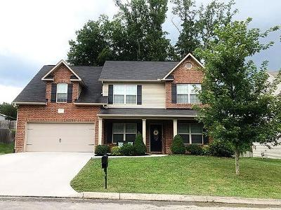 Knoxville Single Family Home For Sale: 1617 Dempsey Rd