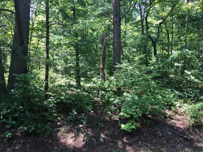 Fairfield Glade Residential Lots & Land For Sale: 150 Manchester Rd