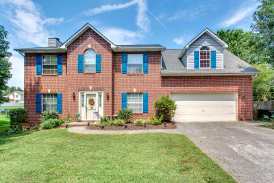 Powell Single Family Home For Sale: 7604 Windwood Drive
