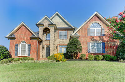 Knoxville Single Family Home For Sale: 267 Brooke Valley Blvd