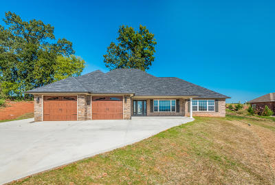 Greenback Single Family Home For Sale: 1143 Houston Springs Rd