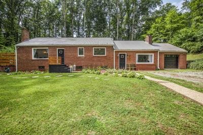 Loudon Single Family Home For Sale: 633 River Rd