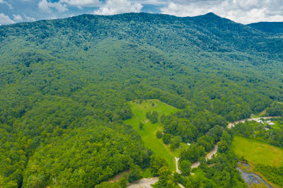 Oliver Springs Residential Lots & Land For Sale: St Rt 116 Tn