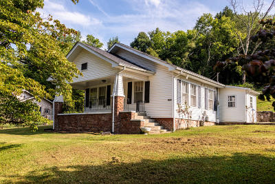 Knoxville Single Family Home For Sale: 4321 Strawberry Plains Pike
