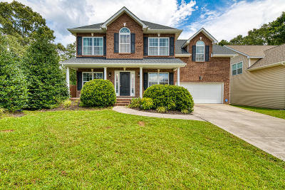 Knoxville Single Family Home For Sale: 7861 Greenscape Drive