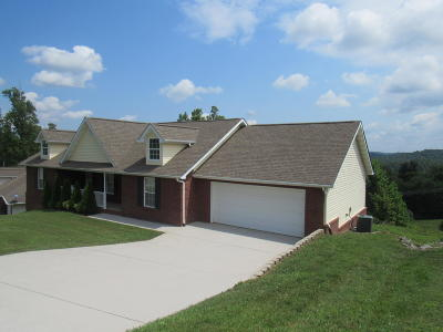 Anderson County Single Family Home For Sale: 4014 Liz Vista Lane