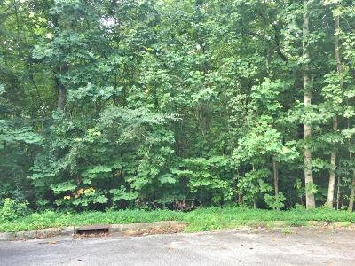Anderson County Residential Lots & Land For Sale: Witt Court