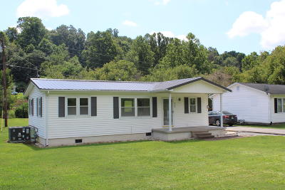 Anderson County Single Family Home For Sale: 933 Briceville Hwy