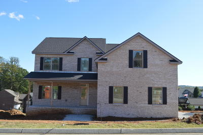 Knoxville Single Family Home For Sale: 4520 McCloud Springs Lane