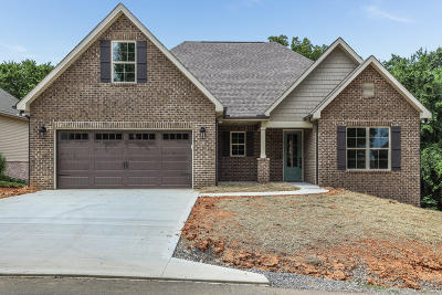 Loudon Single Family Home For Sale: 330 Mingo Way