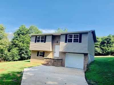 New Tazewell Single Family Home For Sale: 510 Melody Lane
