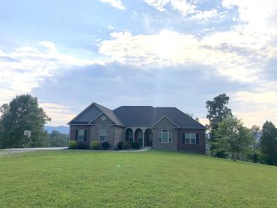 Caryville, Jacksboro, Lafollette, Rocky Top, Speedwell, Maynardville, Andersonville Single Family Home For Sale: 192 River Rd