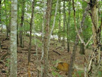 Residential Lots & Land For Sale: Milnor Circle
